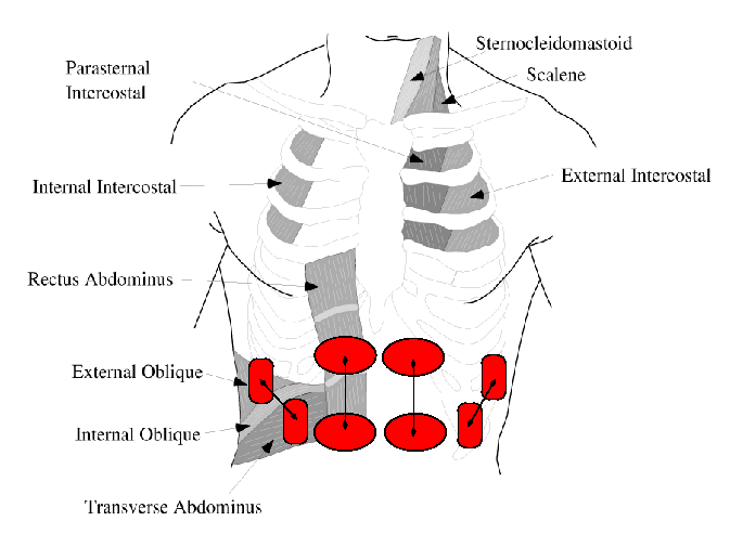 Elektrodenposition